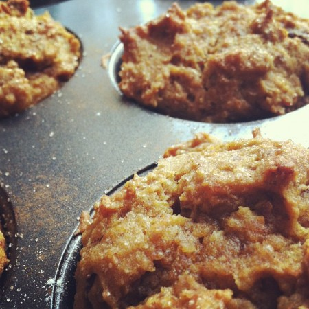Pumpkin Muffins with coconut and flax